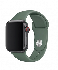 Ремешок Sportband для Apple Watch 42/44mm силиконовый (Сосновый лес)
